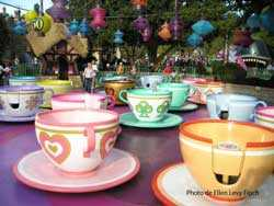 Mad Hatter's Tea Cups
