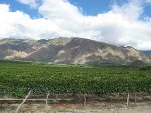 Cafayate mountains
