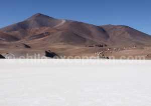 Parc Nevado tres Cruces