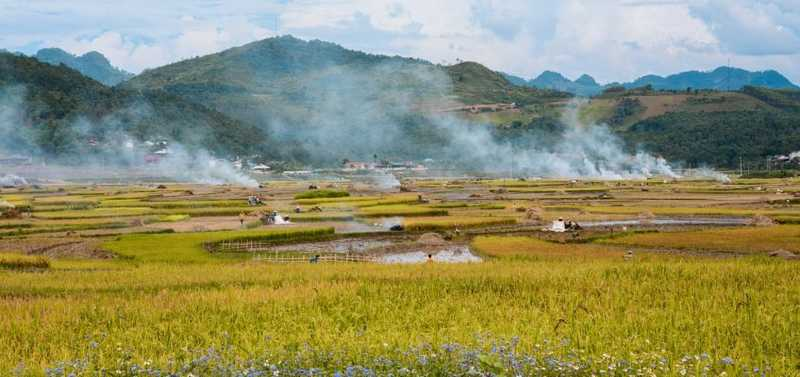 A la découverte des paysages resplendissants du Vietnam
