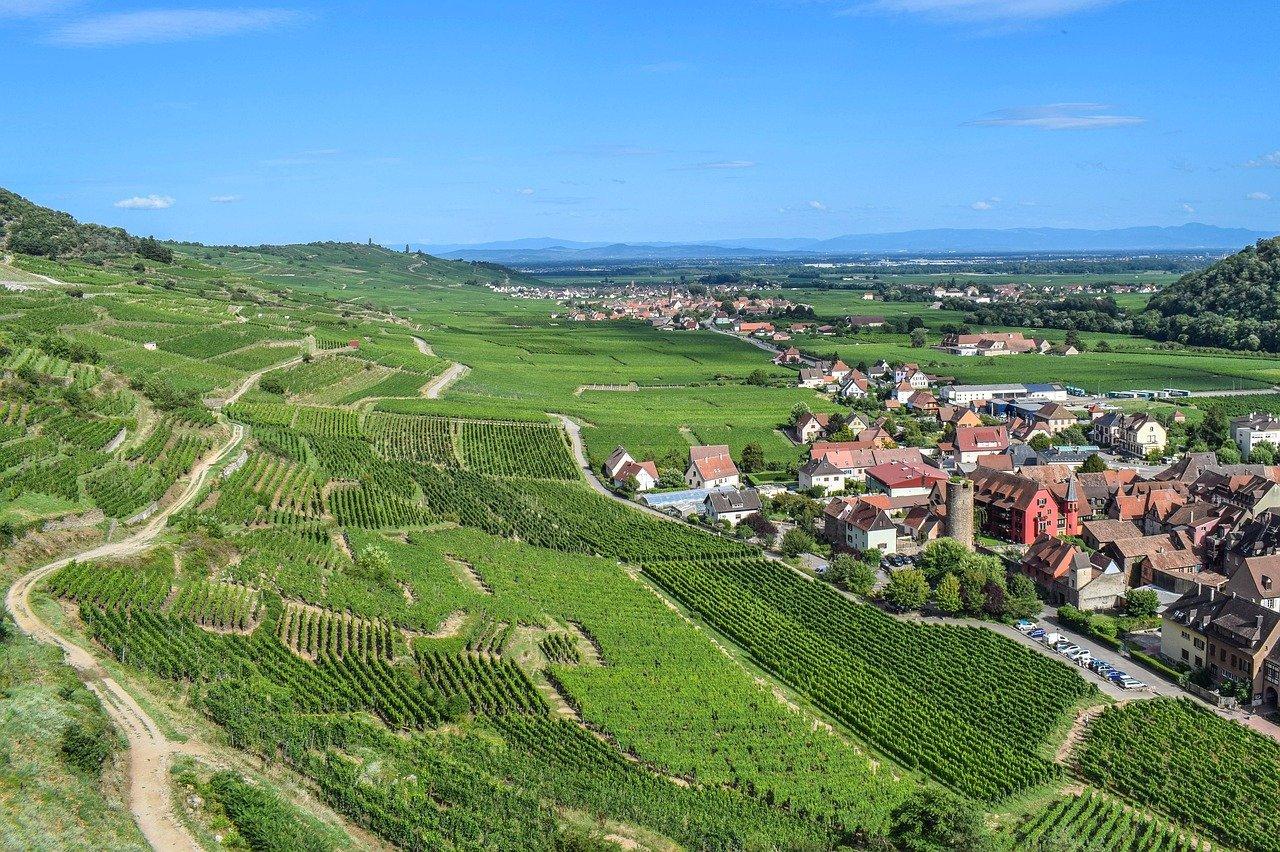 route des vins colmar